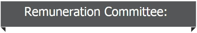 Remuneration Committee banner copy